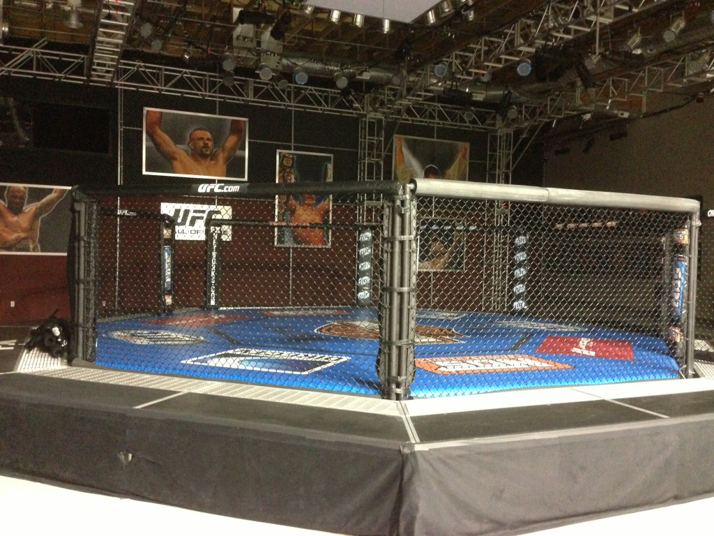 UFC, UFC Training Center, Las Vegas, Vegas, Amir Sadollah, MMA