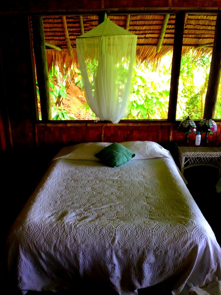Pohnpei, Micronesia, FSM, Federated States of Micronesia, The Village Hotel, waterbed, island