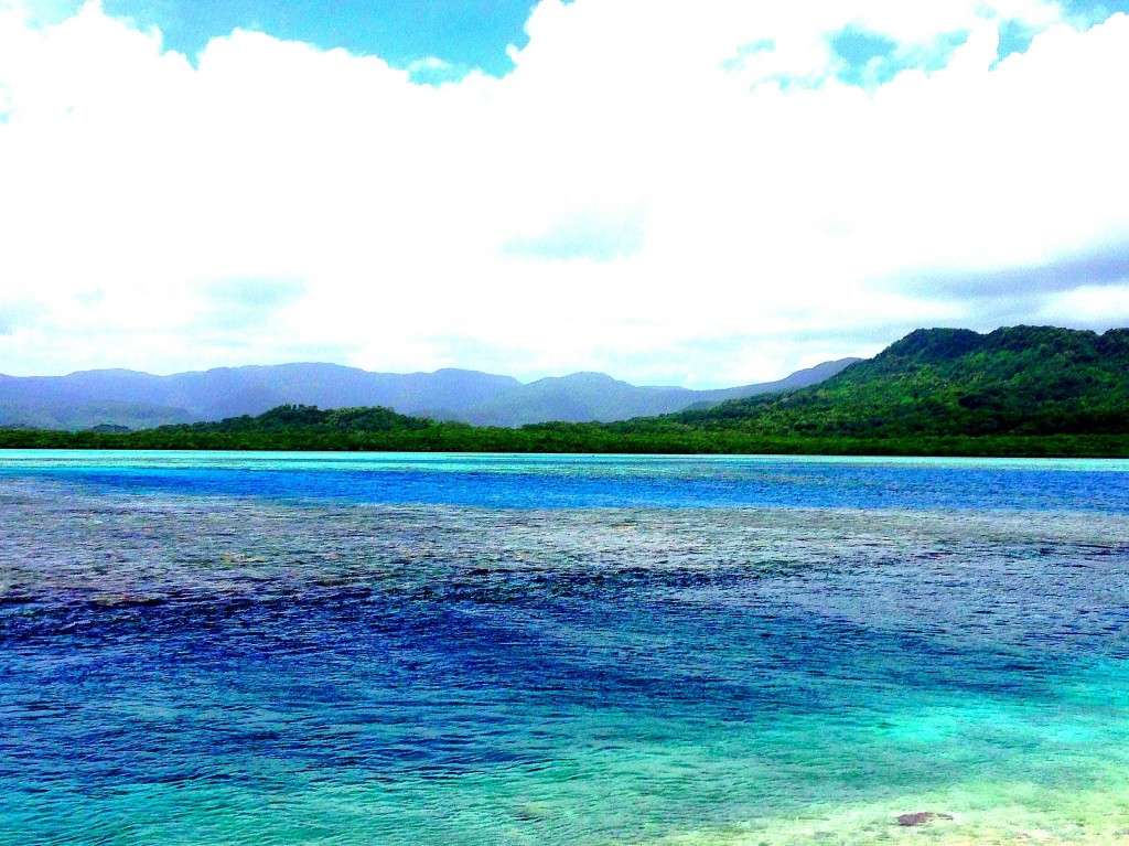 Pohnpei, Micronesia, FSM, Federated States of Micronesia, snorkeling, pacific, lagoon