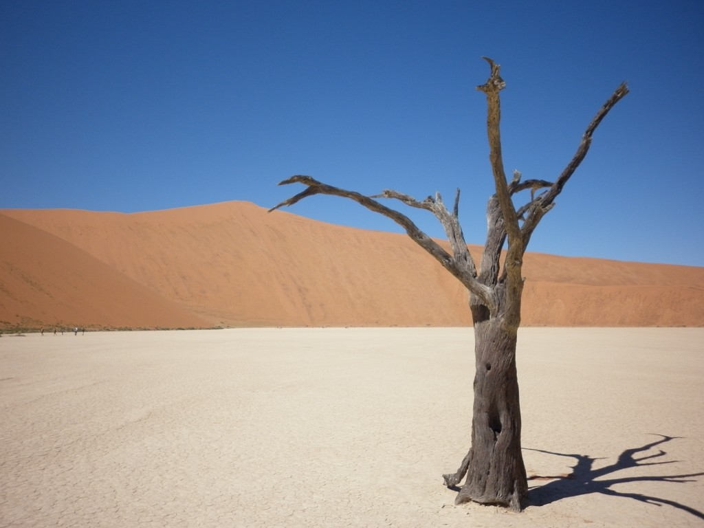 Deadvlei, Sossusvlei, Namibia, Africa, big daddy sand dune, scenery, travel