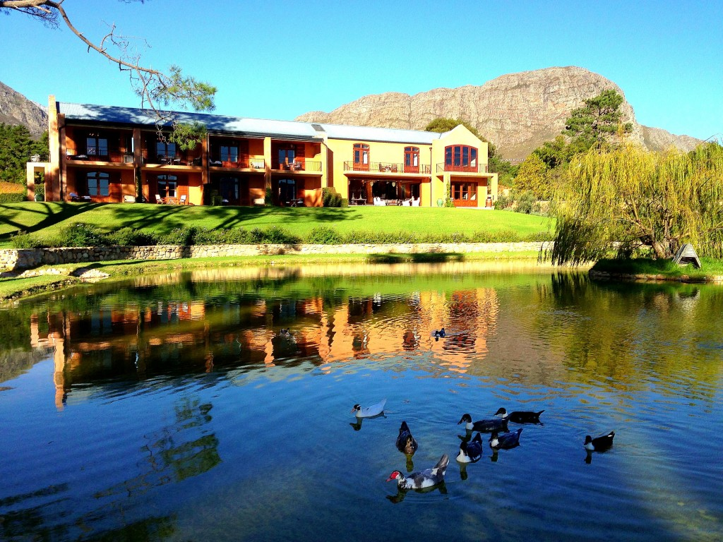 Franschhoek, vineyards, luxury, La Residence Hotel, view, mountains, South Africa, Western Cape, Cape Wine Lands, small town, Africa, duck pond