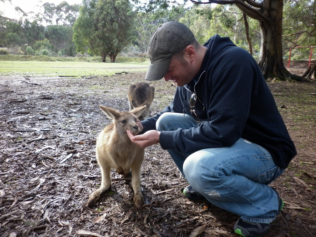 Lee Abbamonte, Tasmania, travel, wallaby