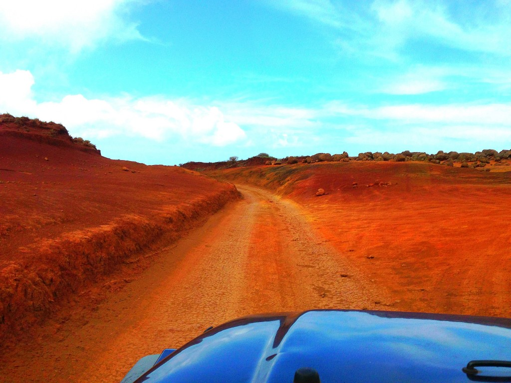 Lanai, offroading, Lanai Grand Adventures, Hawaii, Pacific Ocean, Hawaiian Islands