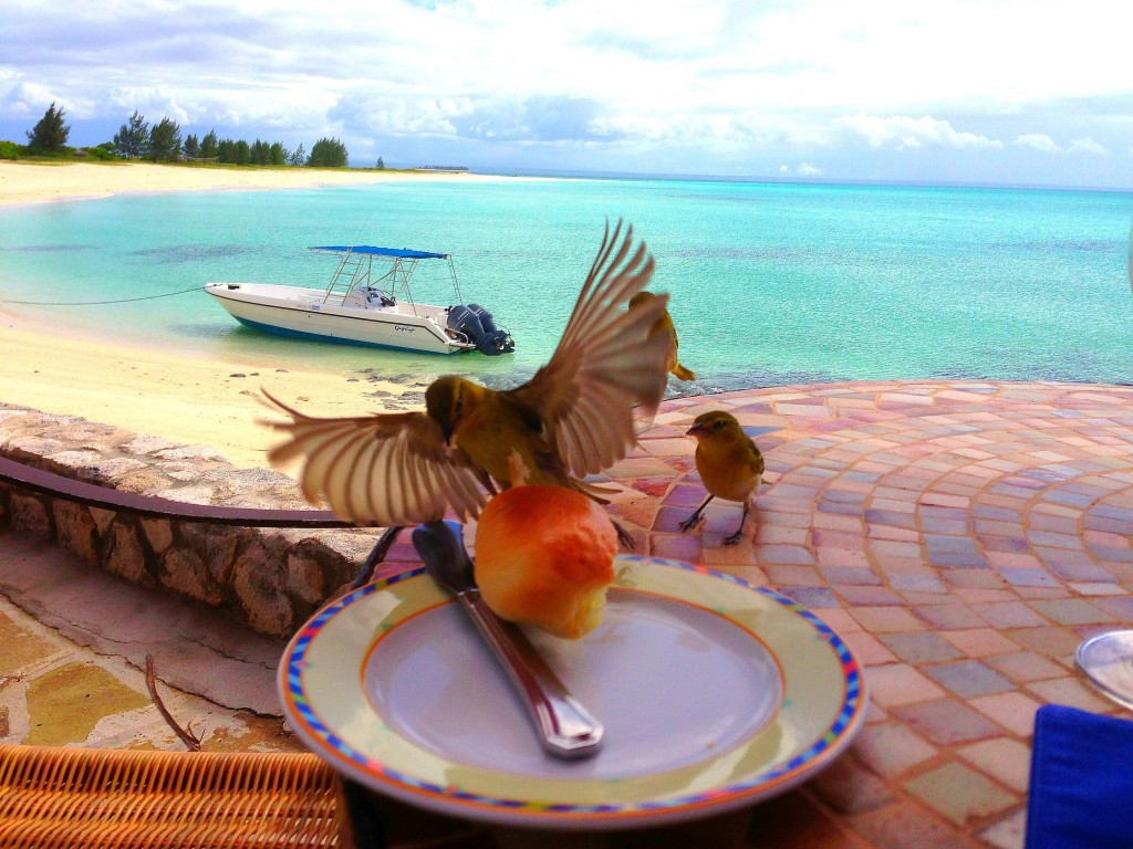Medjumbe Private Island, Mozambique, Africa, Medjumbe, Indian Ocean, private island, island, luxury, hotel