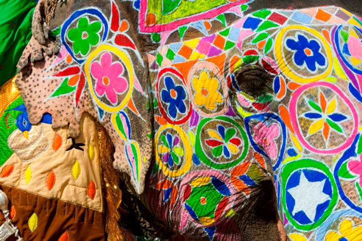Painted elephants during Holi, the Hindu festival of colors, in Jaipur, India.