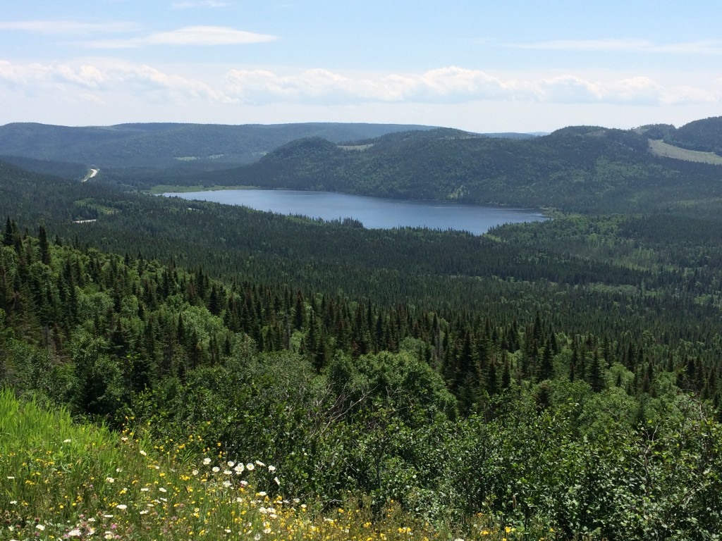 beautiful mountain lake, western newfoundland, Canada
