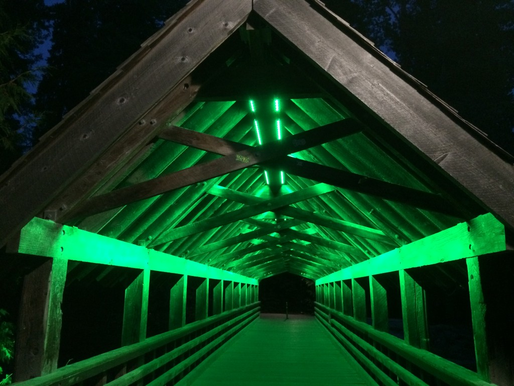 Whistler bridge at night