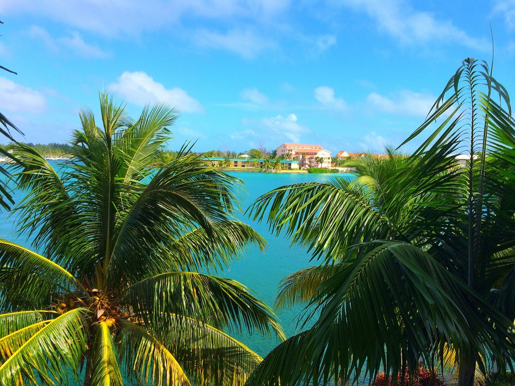 Grand Bahama Island, Pelican Bay Hotel, view