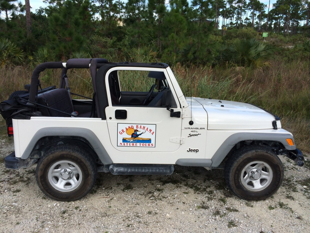 Jeep broken down, Grand Bahama Island