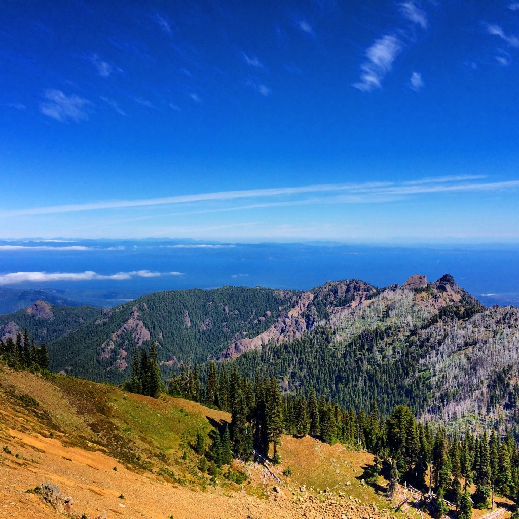 Olympic National Park, Hurricane Hill
