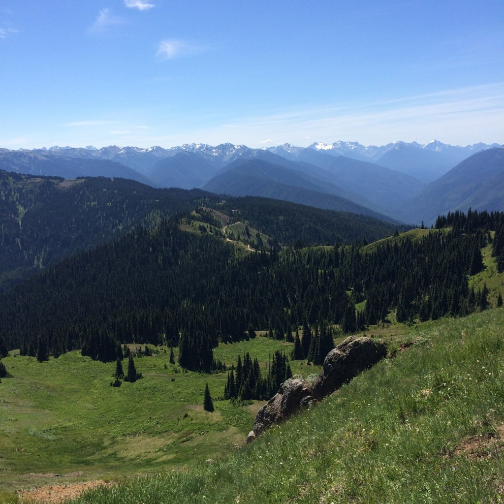 Hurricane Hill view, Olympic National Park