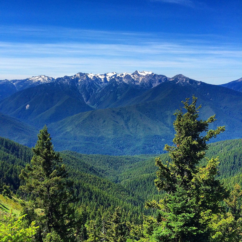 Mount Olympus view, Olympic National Park