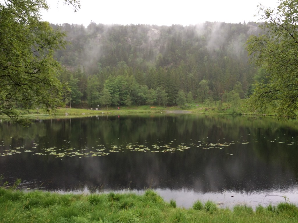 Bergen, Norway, Mount Floyen, pond