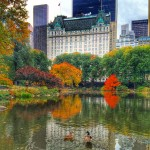 Staycation at The Plaza Hotel