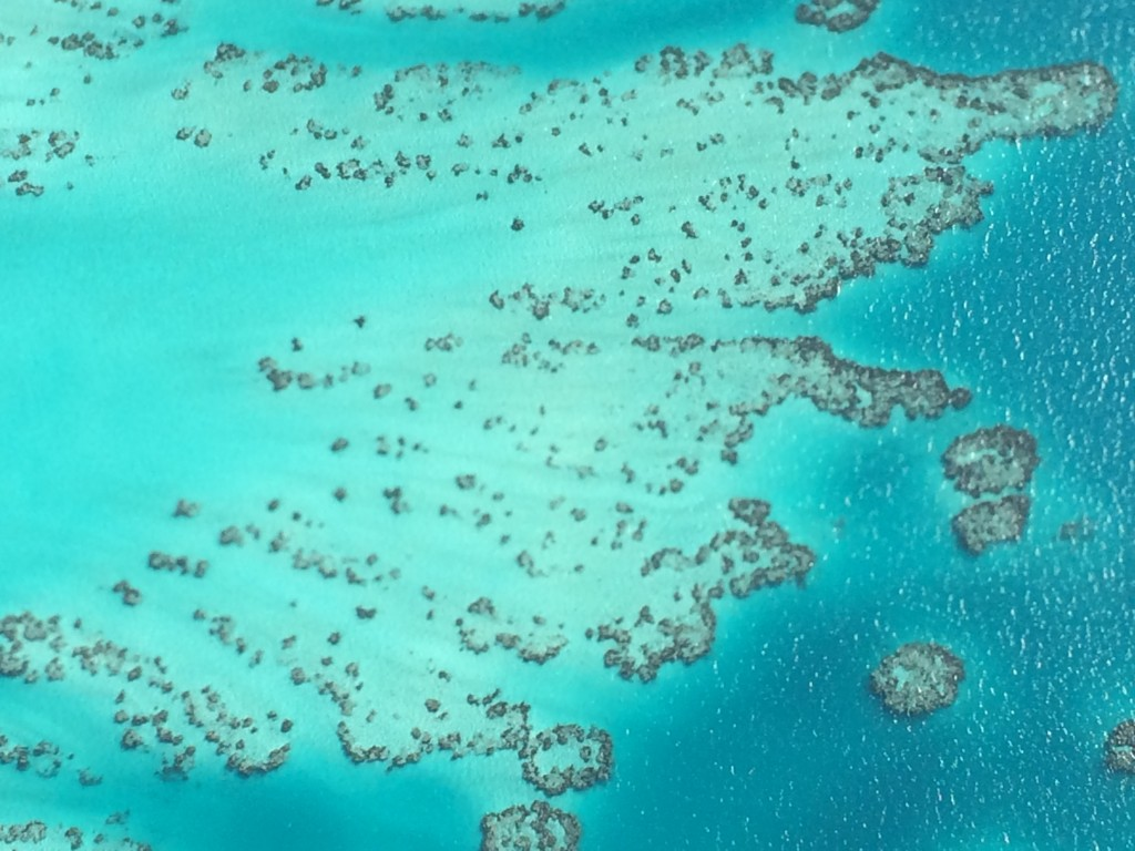 Bermuda, coral, scenic flight