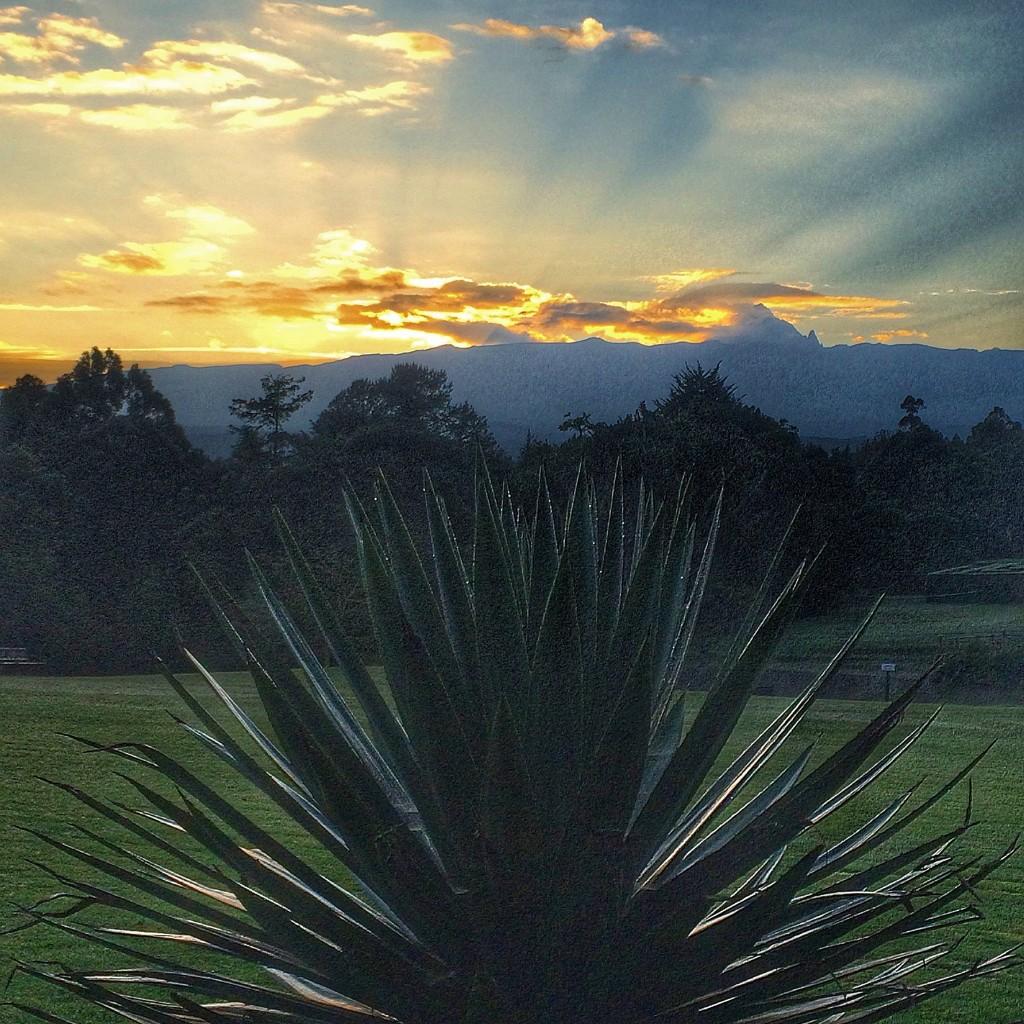 Fairmont Mount Kenya Safari Club, Kenya, sunrise