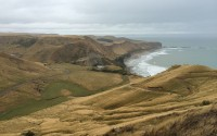 A Daytrip to Cape Kidnappers, New Zealand