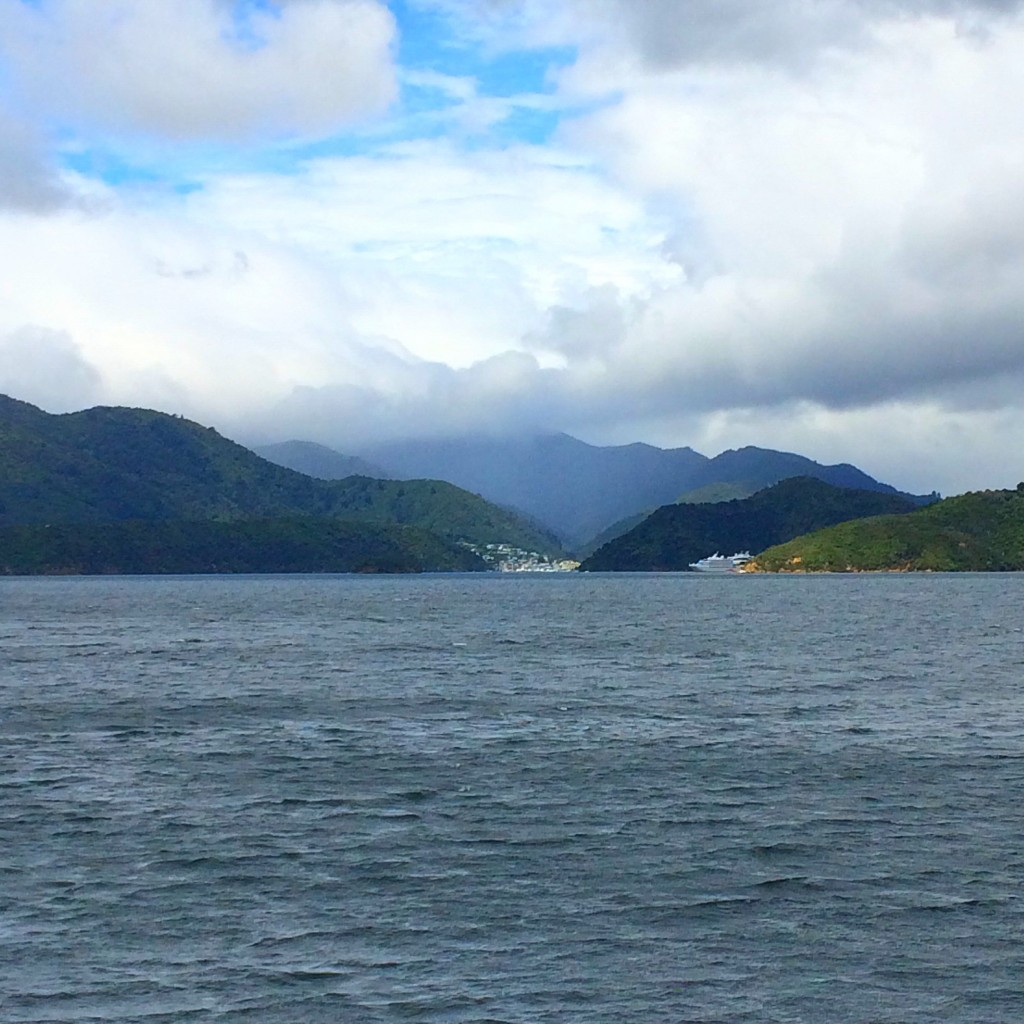 Picton, New Zealand, Queen Charlotte Sound, cruise