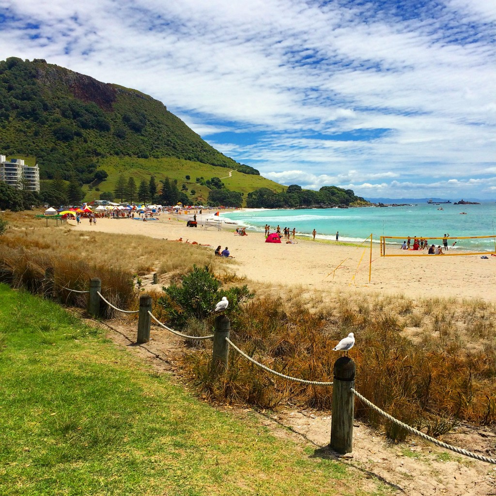 Tauranga, New Zealand, beach, North Island, Why You Should Visit Tauranga