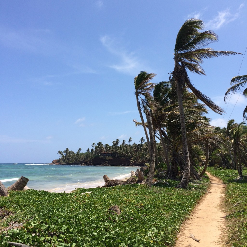 5 Awesome Things to do in Nicaragua, Nicaragua, Corn Islands, Little Corn Island, Little Corn, road