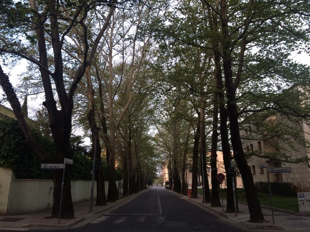 2 Days in Tirana, Albania, Tirana, Blloku, tree lined streets