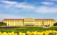 5 Awesome Things To Do in Vienna, Austria