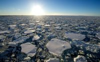 10 Amazing Photos From Antarctica That'll Make You Want To Go Now