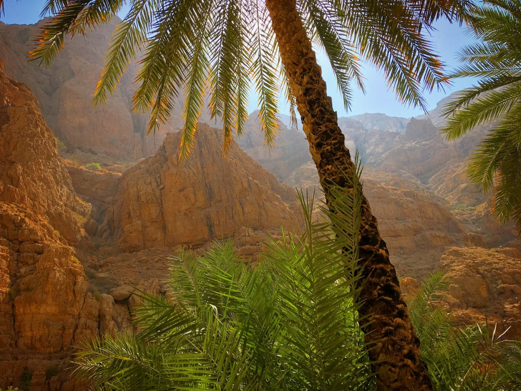 5 Awesome Things to do in Muscat, Oman, Muscat, Azamara, Middle East, Wadi Shab, Jurassic Park