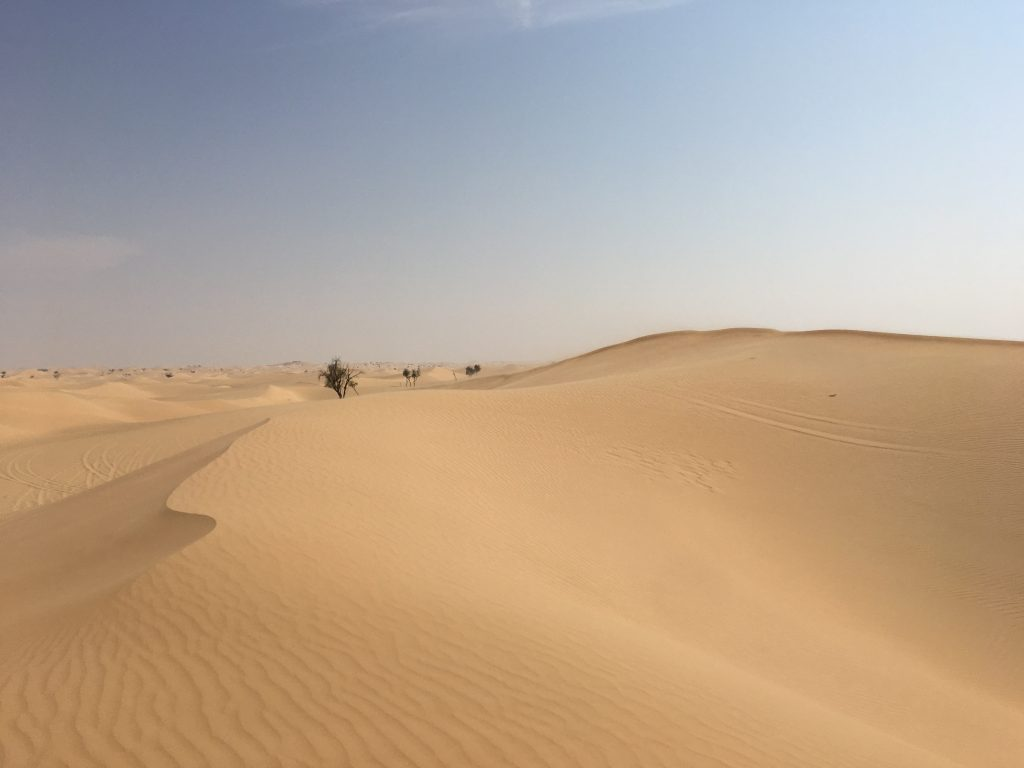 two things you must do in Abu Dhabi, Abu Dhabi, Emirates, United Arab Emirates, desert safari, 4x4, desert, safari, dunes