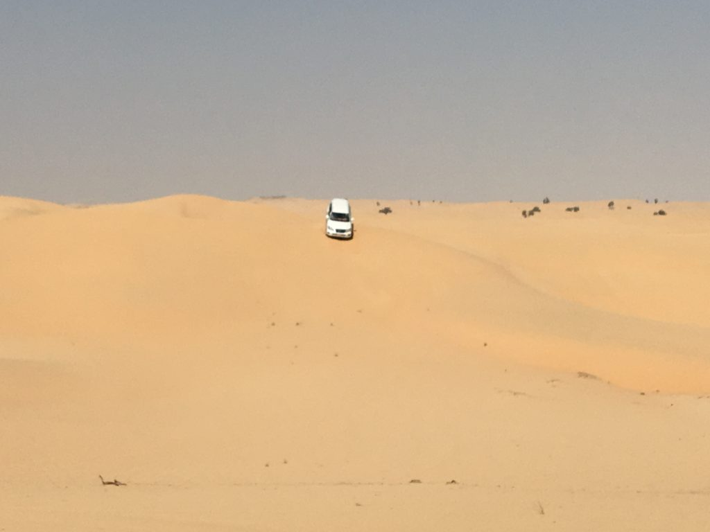 two things you must do in Abu Dhabi, Abu Dhabi, Emirates, United Arab Emirates, desert safari, 4x4, desert, safari