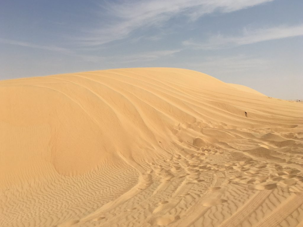 two things you must do in Abu Dhabi, Abu Dhabi, Emirates, United Arab Emirates, desert safari, 4x4, desert, safari, tracks