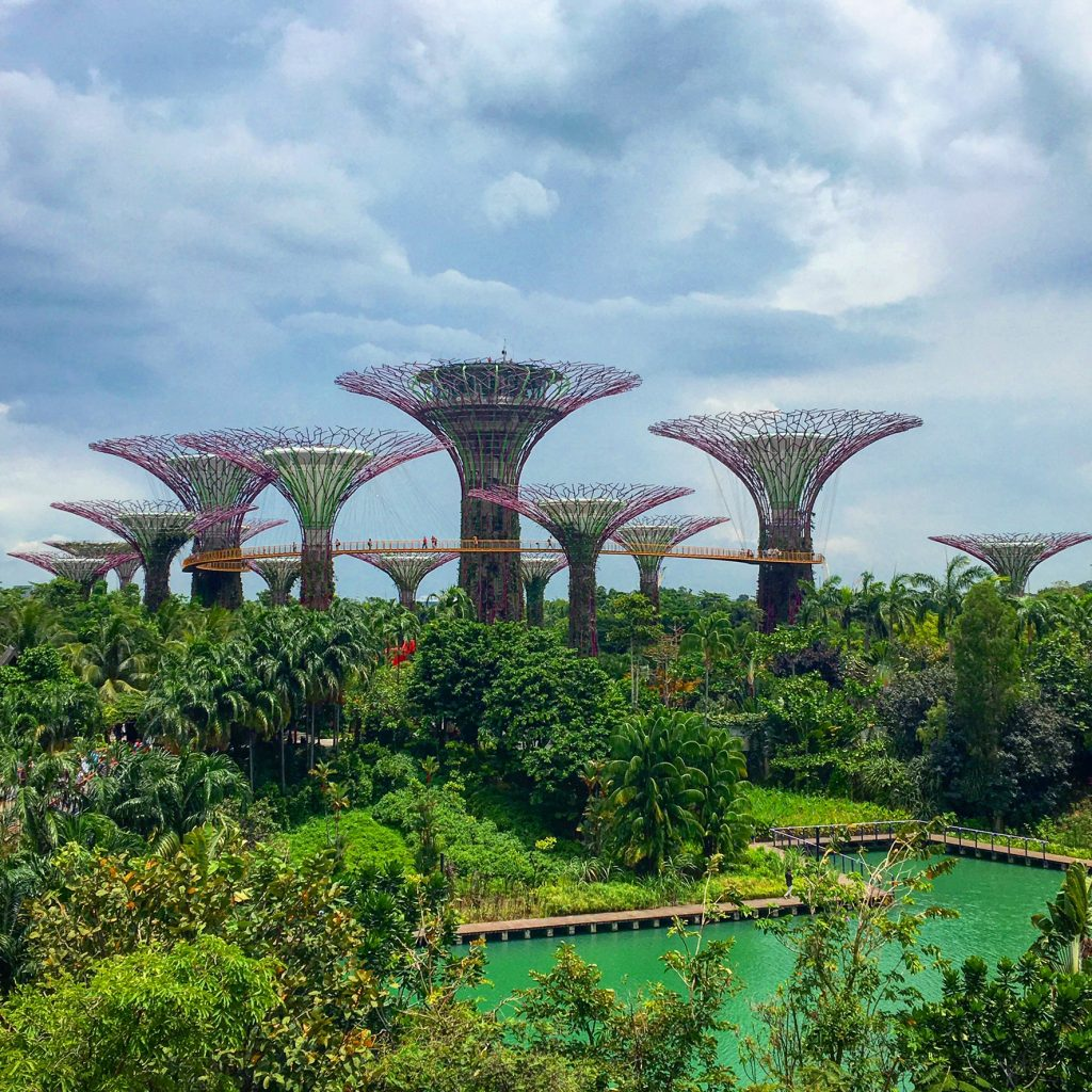 Singapore Has It All, Singapore, Gardens By The Bay