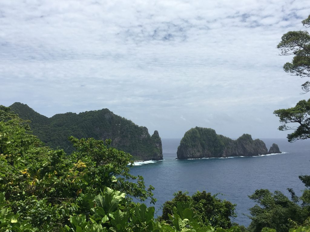 View of the Pinnacles in the National Park of American Samoa