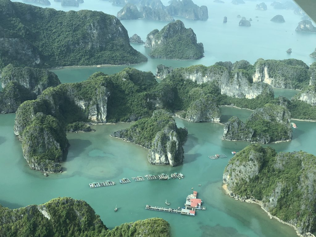 Stunning limestone islands and the life among them
