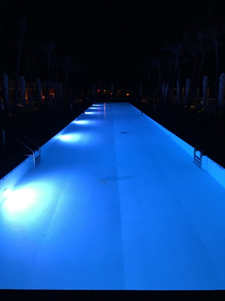 Rooftop pool at 1 Hotel South Beach
