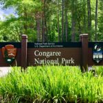 Congaree National Park is Whatever