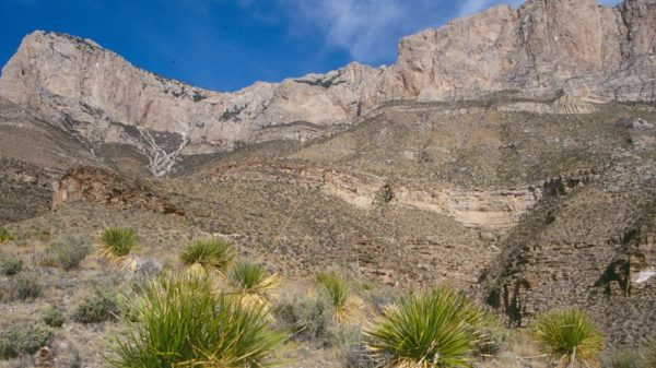 Desert scenery in Guadalupe Mountains National Park