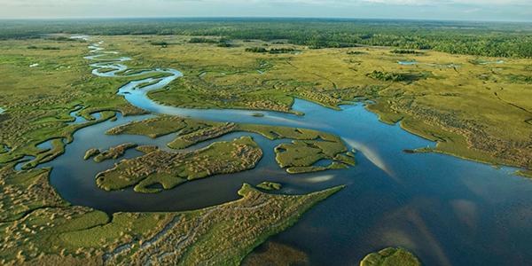 Everglades National park is unique