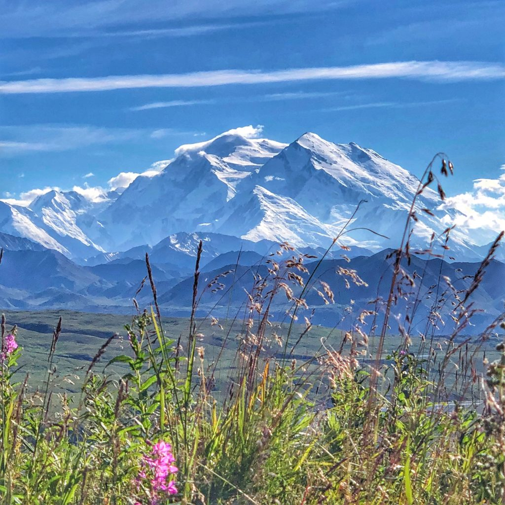 Mount Denali is North America's tallest mountain inside Denali National Park