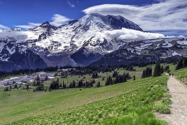 Gorgeous Mount Rainier National Park